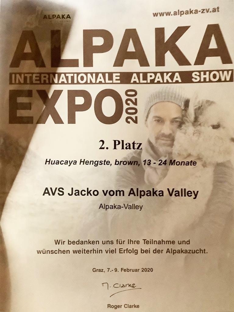 AVS-jacko-alpaka-show